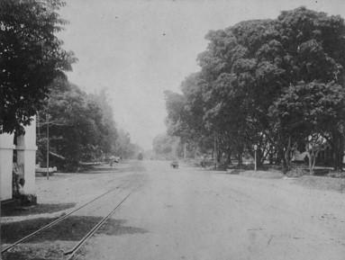 1875 ong. hoofdweg in Meestercornelis. foto Tropenmuseum